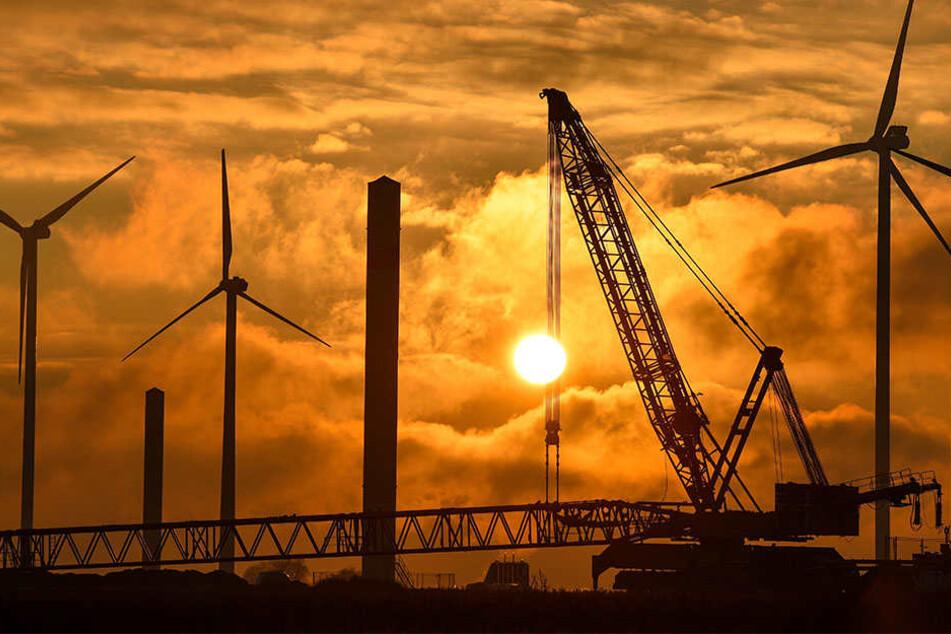 Ein Investor aus Bremen möchte fünf bis sieben Windräder in Hille erbauen. (Symbolbild)