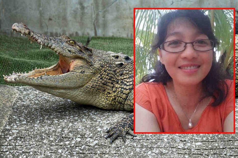 Bei Fütterung: Forscherin wird von Krokodil ins Becken gezogen und zerfleischt