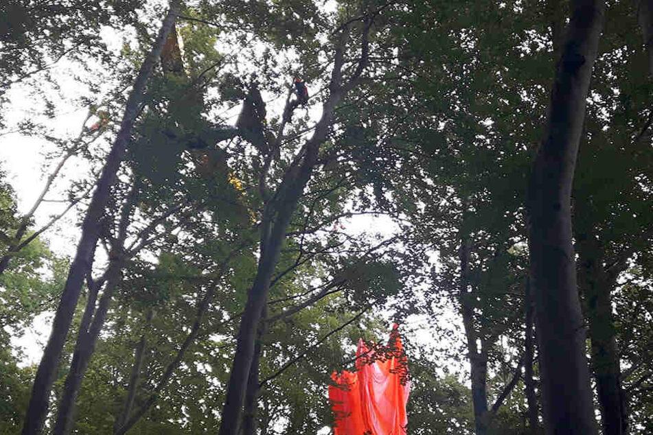 In der von Schwäbisch Gmünd ist ein Ultraleichtflugzeug abgestürzt und in einem Baum hängen geblieben.