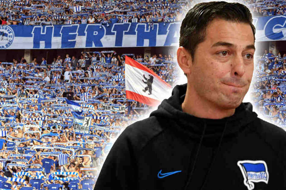 Ante Covic ist trotz der sportlichen Entwicklung beim blau-weißen Anhang sehr beliebt. (Bildmontage)