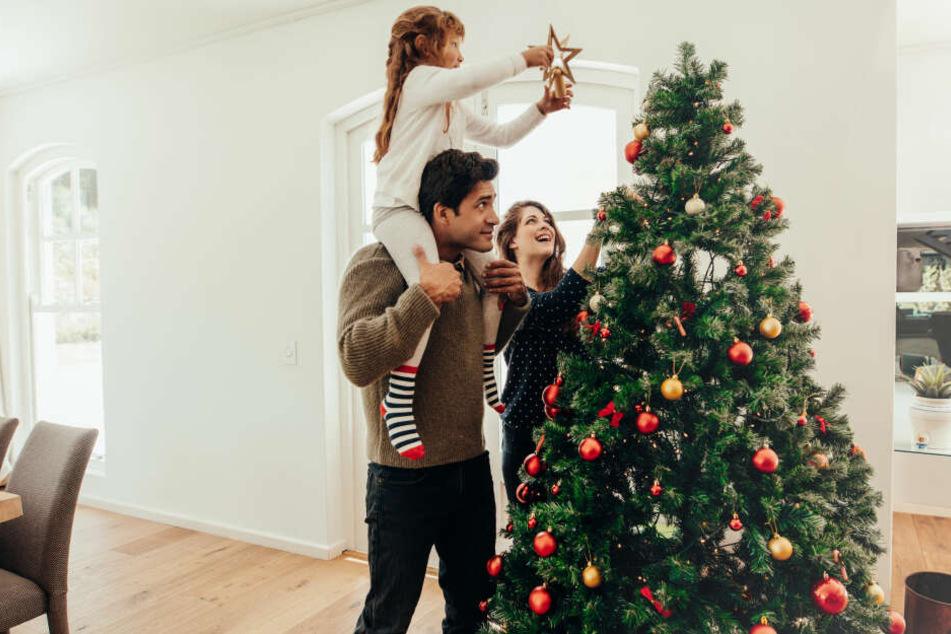 Steht der Weihnachtsbaum richtig? Mit einem guten Ständer gelingt das Aufstellen leicht und sicher.
