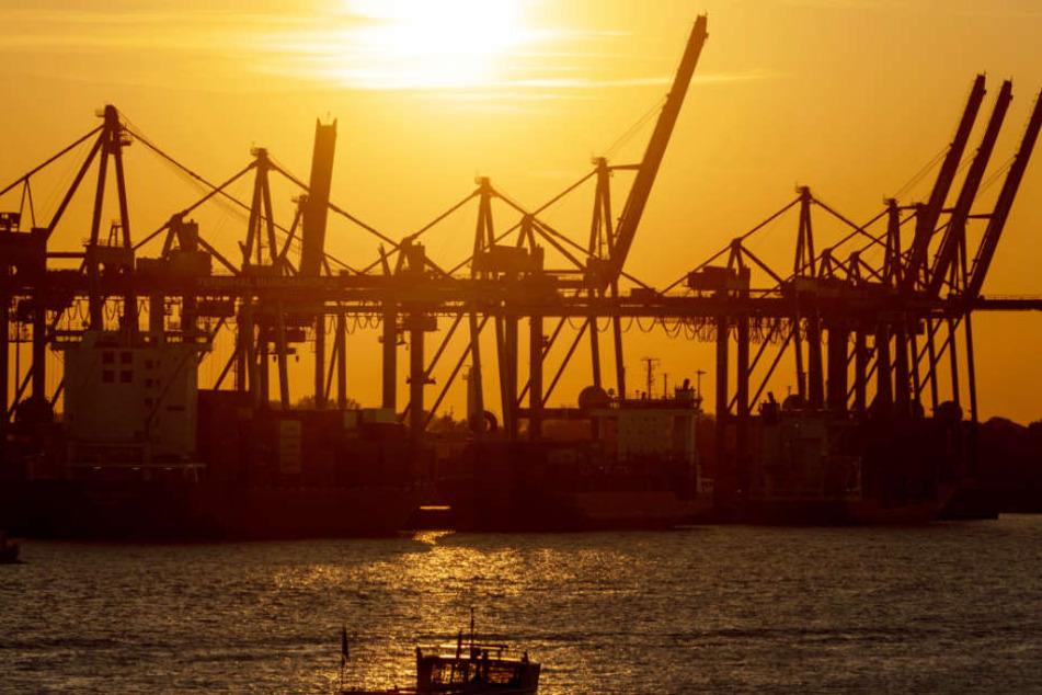 Der Hamburger Hafen bekommt noch die letzten Sonnenstrahlen des Jahres ab.