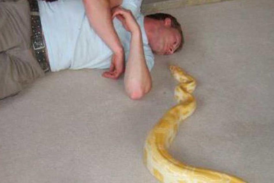 """Die Python """"Tiny"""" soll ihren Besitzer ermordet haben."""