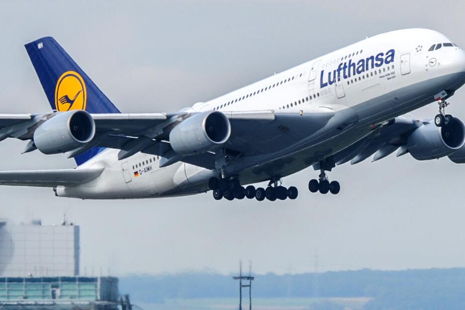 Lufthansa-Küche bleibt kalt, obwohl Streik verboten wurde