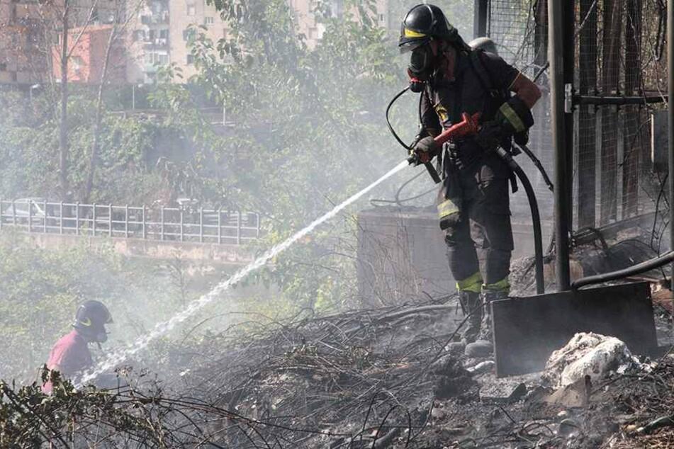 Feuerwehrmänner legen Feuer: Nach Festnahmen wird der beschämende Grund klar