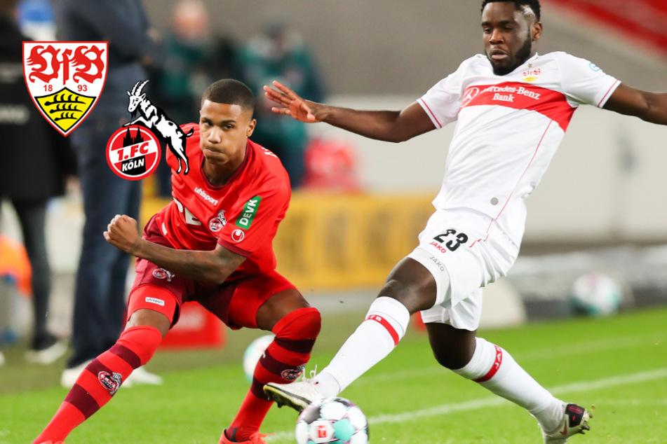 VfB gibt gegen den 1. FC Köln Führung aus der Hand