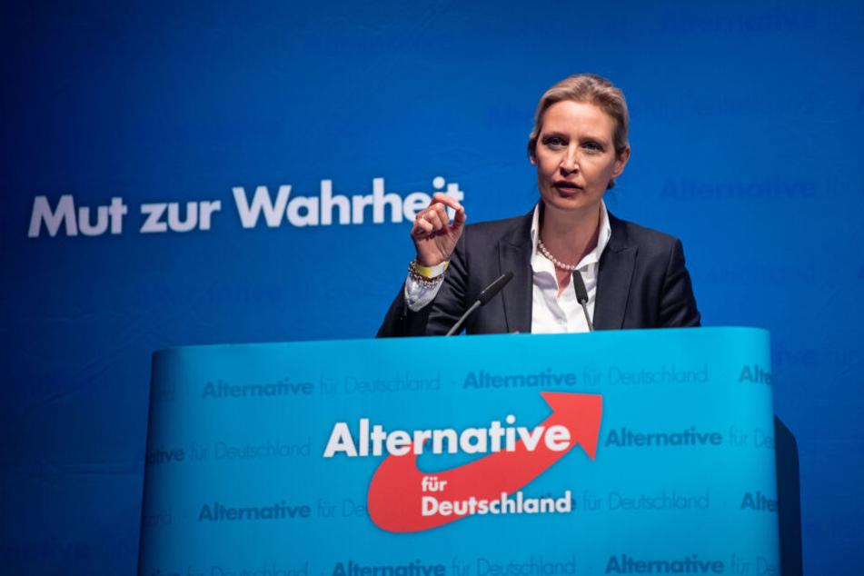 Alice Weidel auf dem Sonderparteitag der AfD.