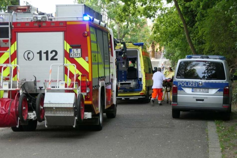 In Grimma ist ein Ast von einem Baum gestürzt und hat zwei Menschen verletzt.