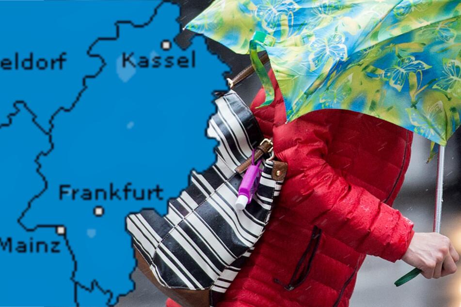 Dauerregen! Schmuddel-Wetter in Frankfurt und ganz Hessen