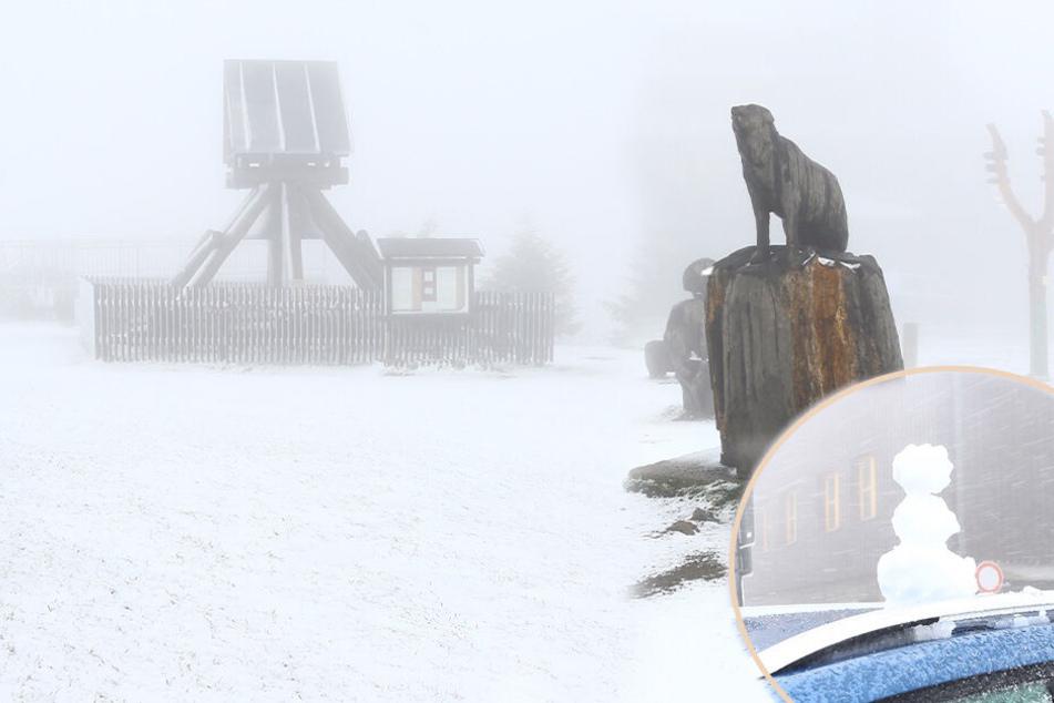 Mehrere Zentimeter Neuschnee in Sachsen
