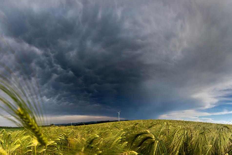 Bis zum Wochenende gibt's erstmal eine Abkühlung: Gewitter und örtliche Unwetter kommen auf uns zu.