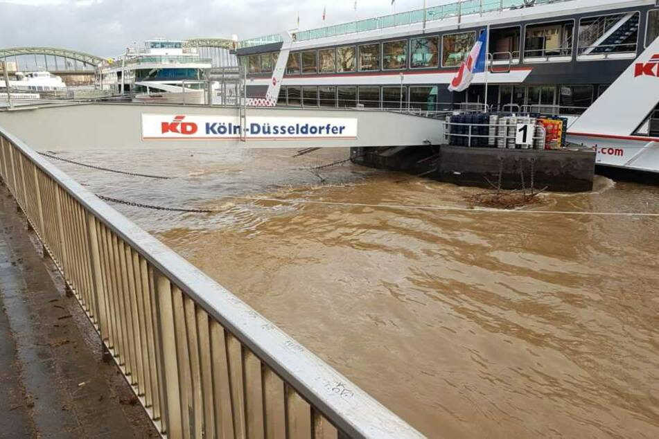 Rhein-Pegel in Köln kräftig angeschwollen!