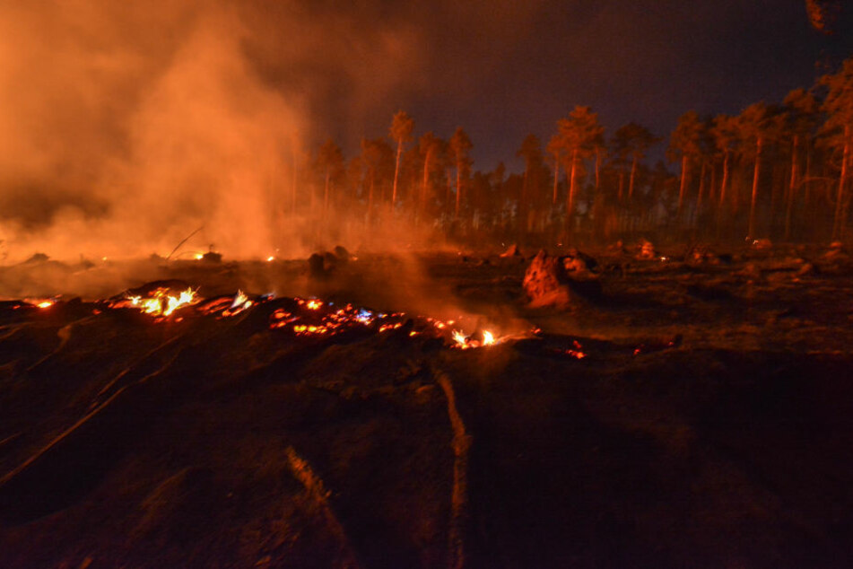 Der Feldbrand griff auf einen angrenzenden Wald über.