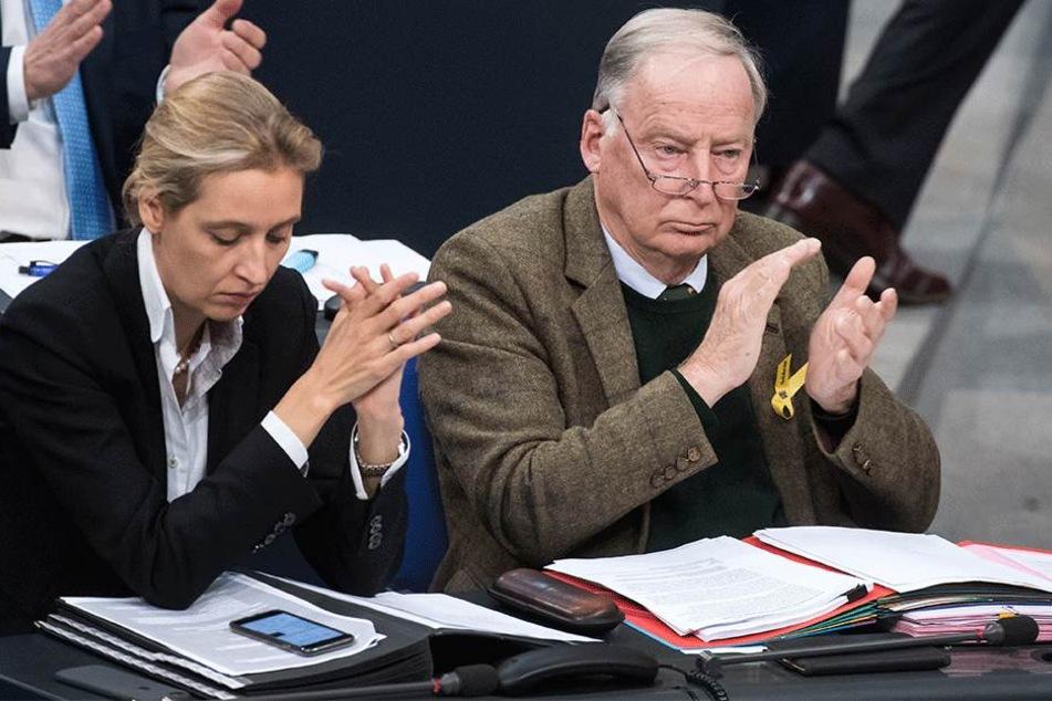 AfD überrascht im Bundestag mit völlig anderem Verhalten als erwartet