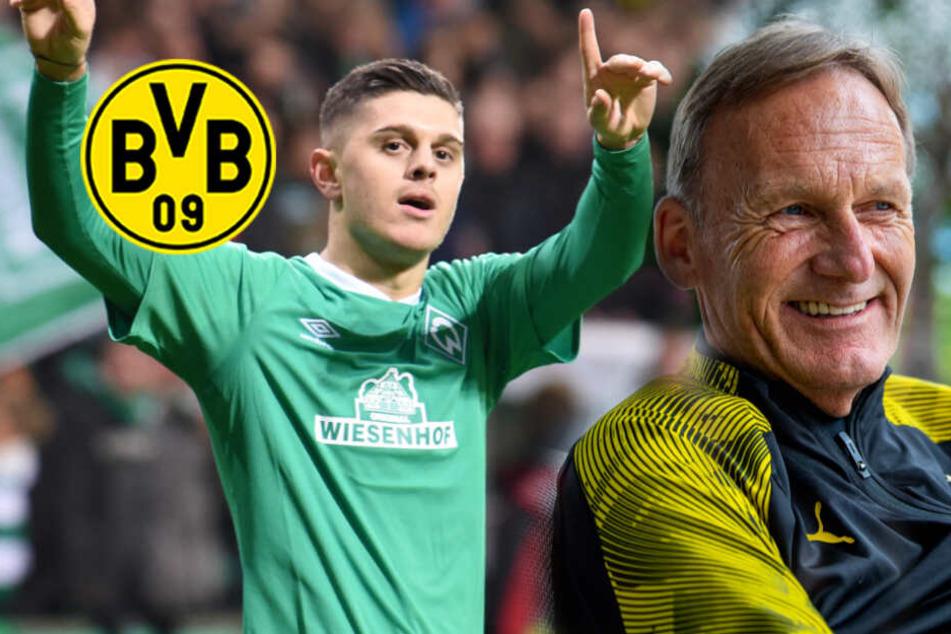 BVB und Bremens Milot Rashica: Verhandlungen wohl sehr weit fortgeschritten!
