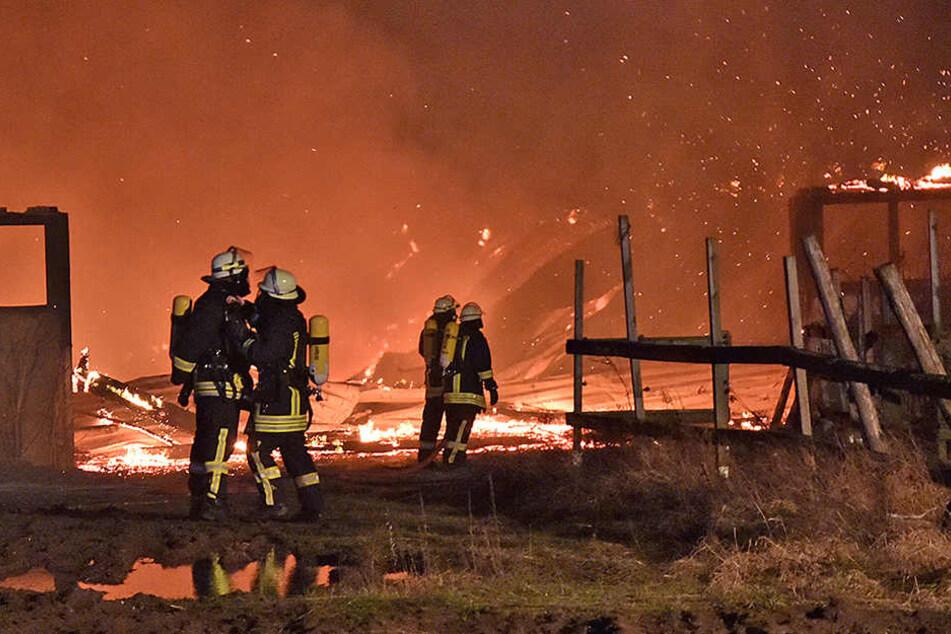 Insgesamt 88 Einsatzkräfte waren bei den Löscharbeiten vor Ort.