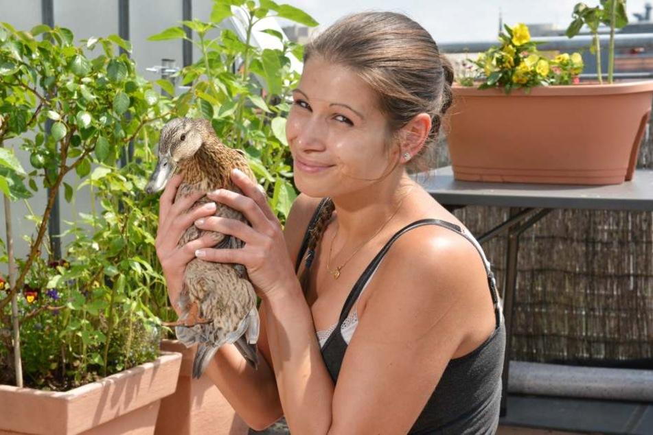 """Beherzt zugegriffen: Vogelretterin Saskia Keller (32) schnappte """"Nagnag"""" für die Evakuierung vom Balkon."""