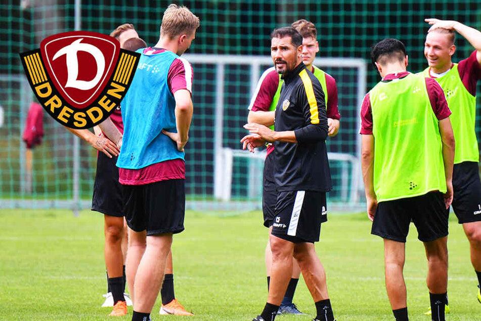 """Dynamo-Trainer Cristian Fiel: """"Schwitze erst wieder, wenn die Spiele losgehen!"""""""