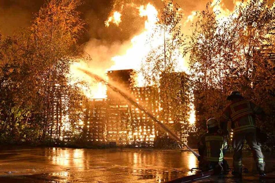 Hunderte Europaletten brannten in einer Lagerhalle in Alt-Hohenschönhausen.
