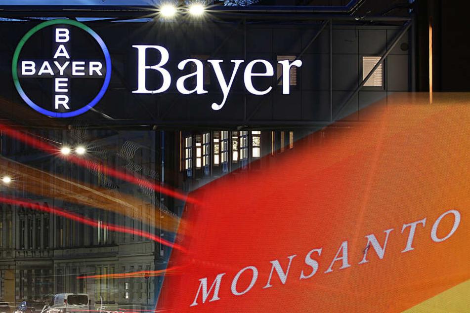 Krebsrisiko durch Glyphosat? Bayer-Tochter Monsanto verliert!