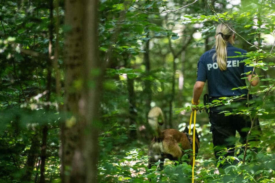Eine Polizistin sucht mithilfe eines Suchhundes in einem Waldstück nach Hinweisen. Ein elfjähriges Mädchen wurde am hellichten Tag von einem Mann, der eine Wolfsmaske getragen haben soll, vergewaltigt.