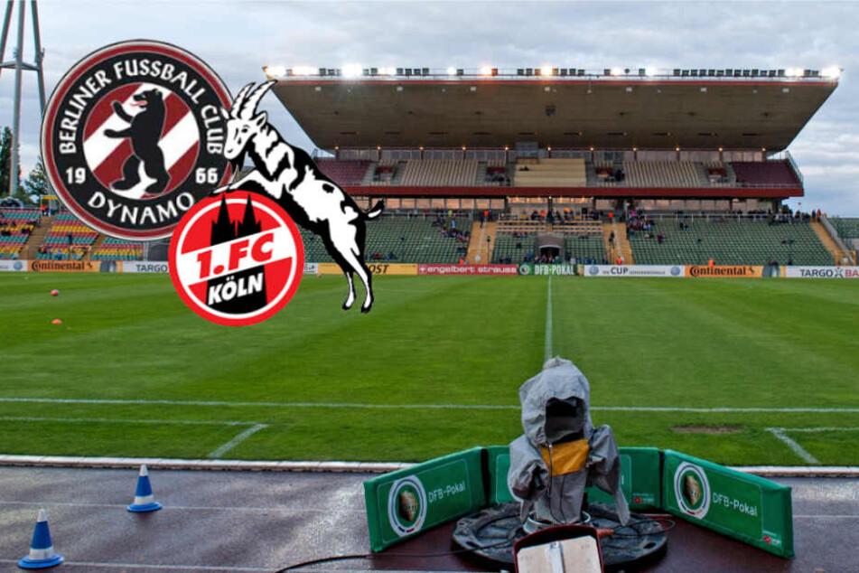 Stadion-Problem gelöst! Hier fordert der BFC Dynamo den 1. FC Köln heraus