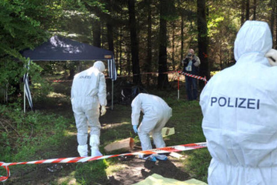 Kriminalbeamte untersuchen 2010 bei Heidenheim-Nietheim den Waldboden. Dort wurde die Leiche von Maria Bögerl gefunden.