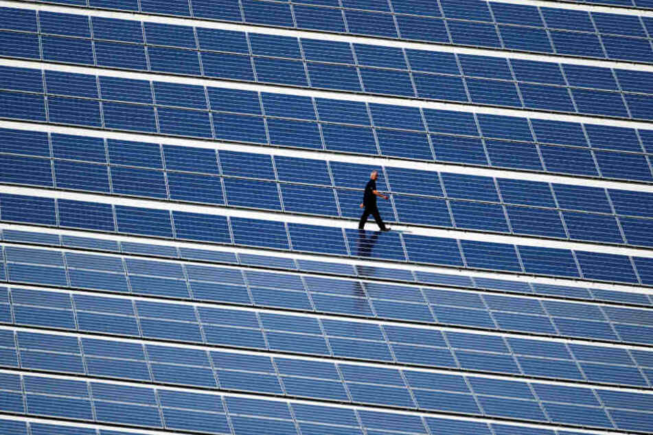Insgesamt 30 Millionen sollen deutsch eund chinesische Tatverdächtige bei der Einfuhr von Solarmodulen hinterzogen haben. (Symbolbild)