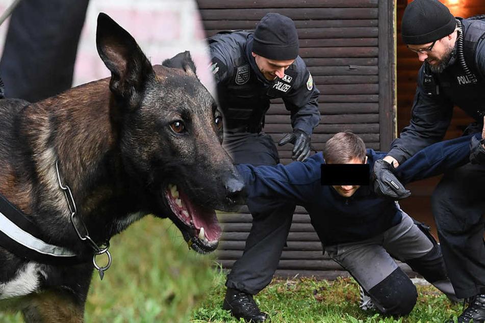 Im Grenzgebiet! Hier macht die Polizei jetzt Jagd mit Hunden