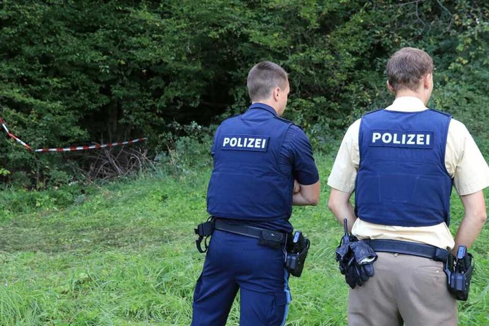 Wanderer finden verwitterte Leiche im Wald: Gewaltverbrechen nicht ausgeschlossen!