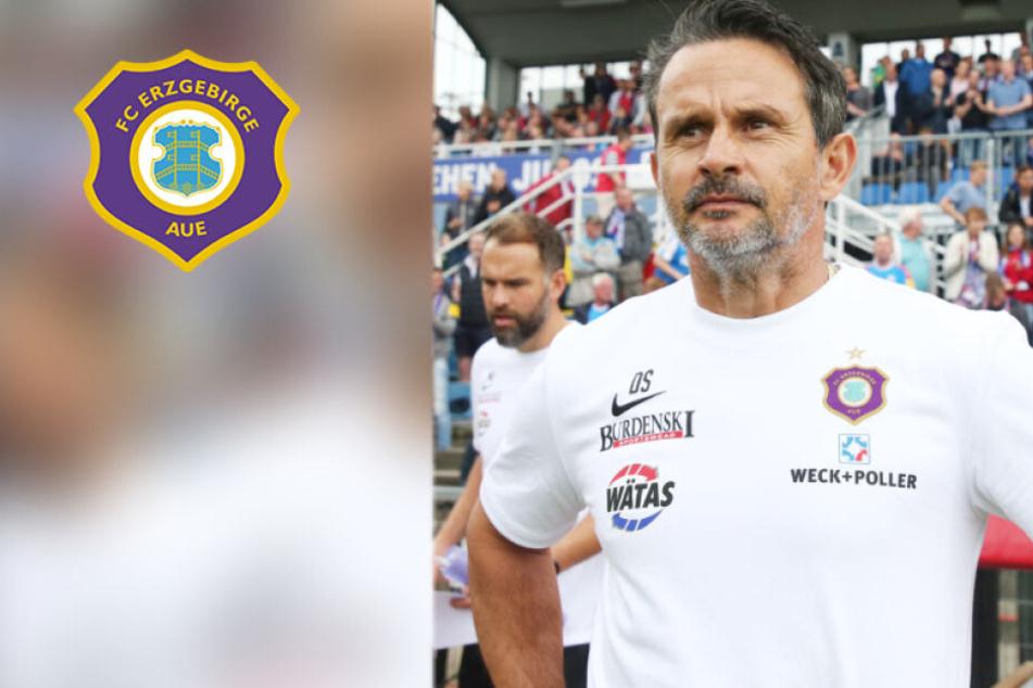 Aue-Trainer Dirk Schuster hebt trotz der bisherigen Sahne-Saison seiner Mannschaft nicht ab