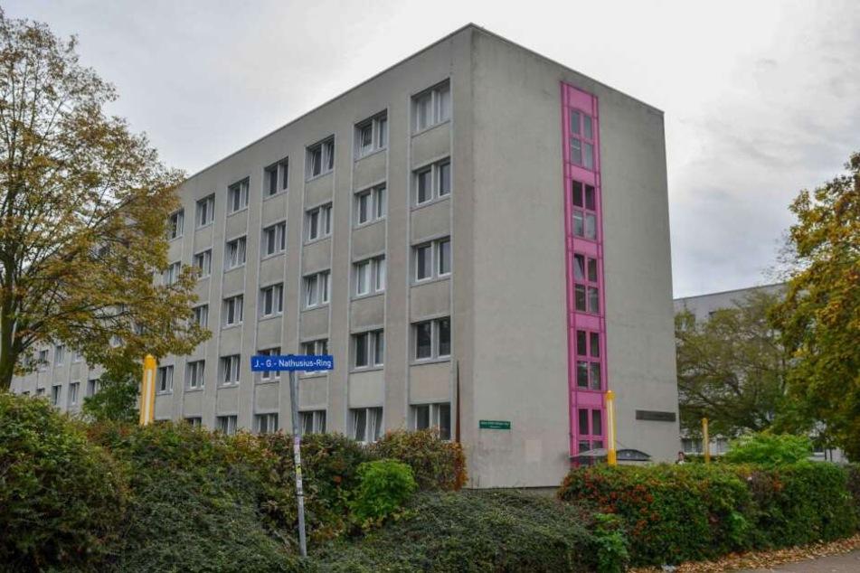 Trio stürmt Studentenwohnheim mit Sturmhauben und hinterlässt Chaos