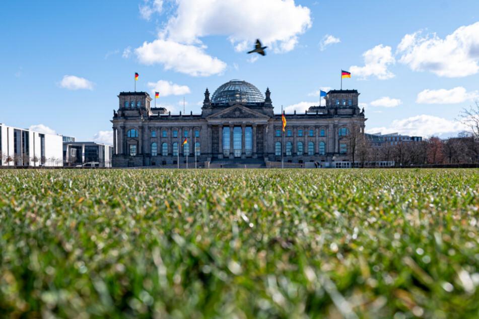 Der Blick auf den Reichstag. Die Wiese ist fast menschenleer.