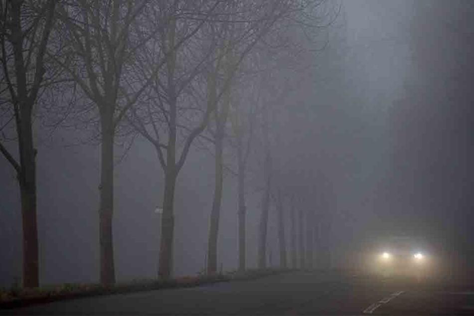 Im Dunkeln übersah der Pkw-Fahrer den Transporter und krachte in das am Fahrbahnrand abgestellte Fahrzeug. (Symbolbild)