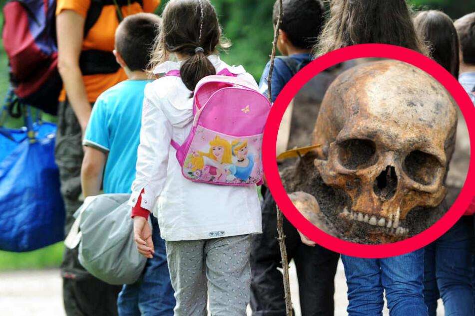 Grundschüler finden Knochen und Menschen-Schädel