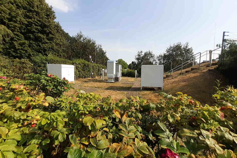 Streit der Wetterdienste: Hitzerekord von Lingen nicht anerkannt