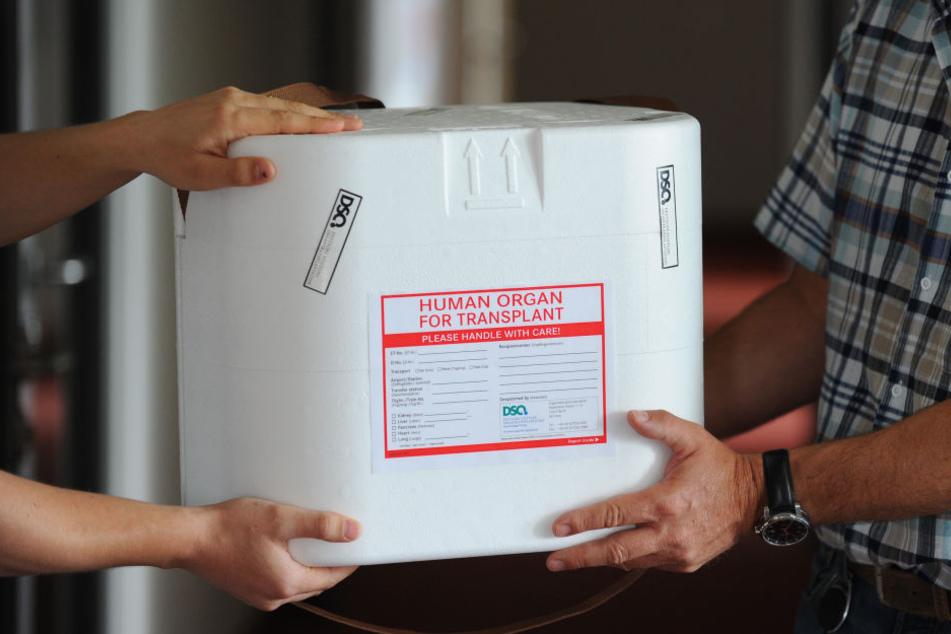 Patienten, denen Organe entnommen werden sollen, müssen noch tagelang nach ihren Tod auf der Intensivstation behandelt werden.