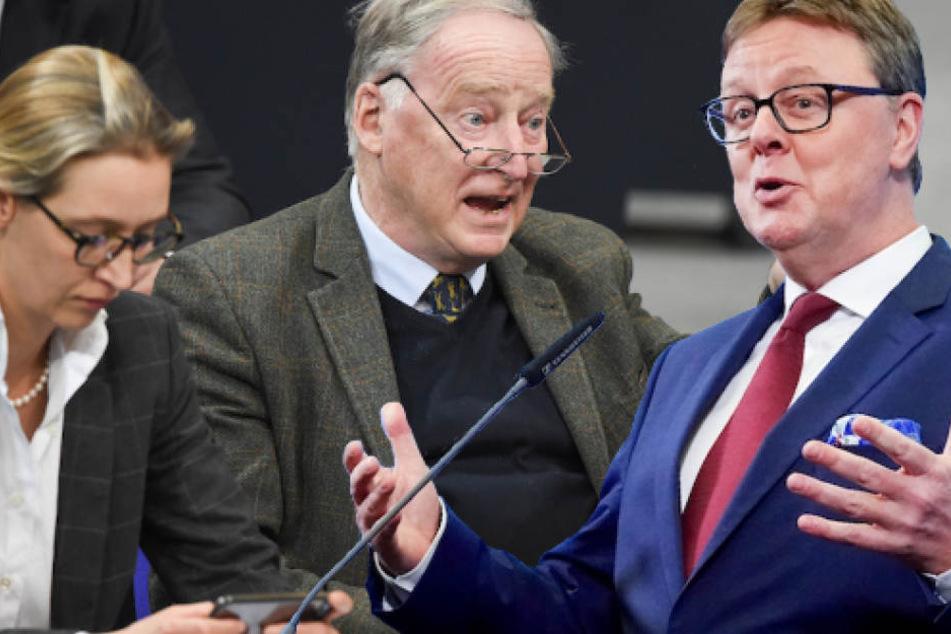 CDU-Politiker Michael Grosse-Brömer (57, re.) fordert eine deutliche Distanzierung der AfD um die Vorsitzenden Weidel und Gauland vom Rechtsextremismus.