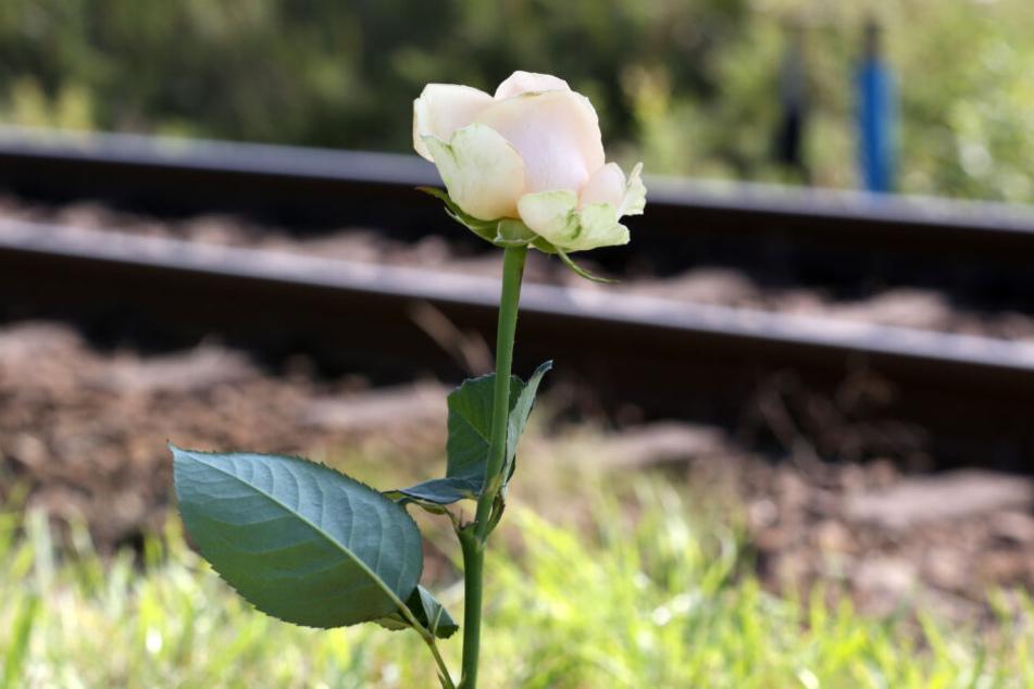 In Elsterwerda wurde ein Auto von einem Zug erfasst. Dabei kam der Fahrer des Wagens ums Leben (Symbolbild).