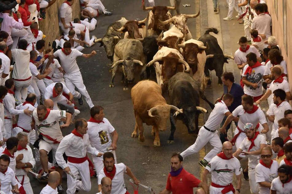 Männer werden von Stier am Hodensack aufgespießt