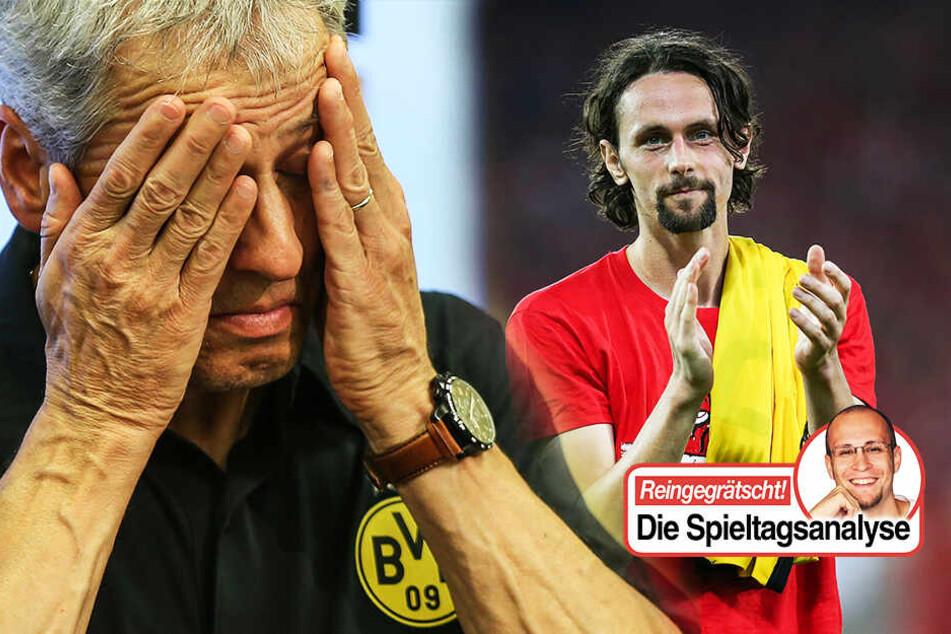 """Bundesliga-Analyse: Union-Sensation! So konnten die """"Eisernen"""" den BVB bezwingen!"""