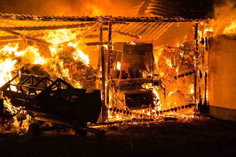 Noch ist unklar, ob bei dem Brand Personen verletzt wurden.