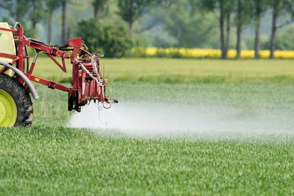 Auch Pflanzenschutzmittel belasten die Qualität des Grundwassers.