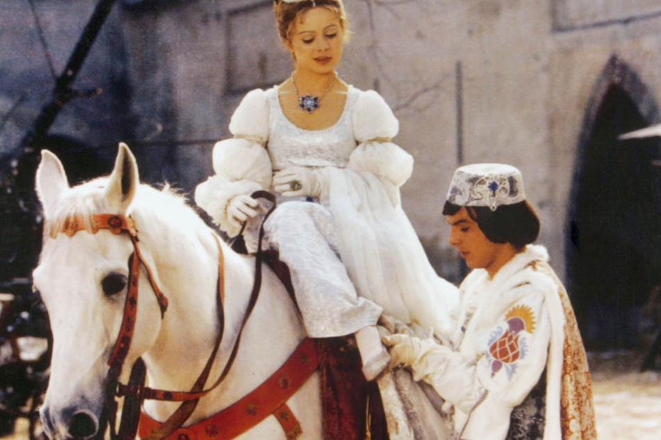 Drei Haselnüsse für Aschenbrödel: Ein Pferd wurde zu Salami verarbeitet!