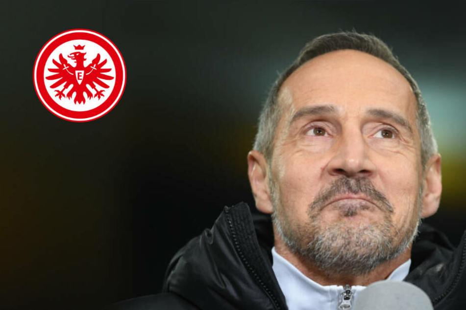 Europa League: Eintracht will gegen Salzburg BVB-Pleite schnell gutmachen
