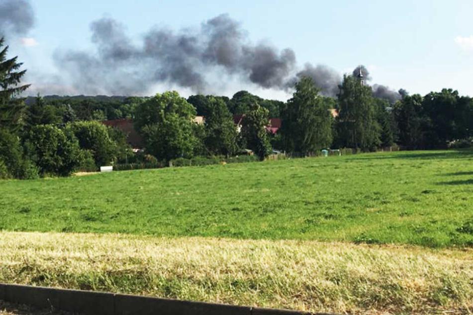 Über Dresden-Lockwitz stieg am Dienstagnachmittag eine Dutzende Meter hohe Rauchsäule auf.