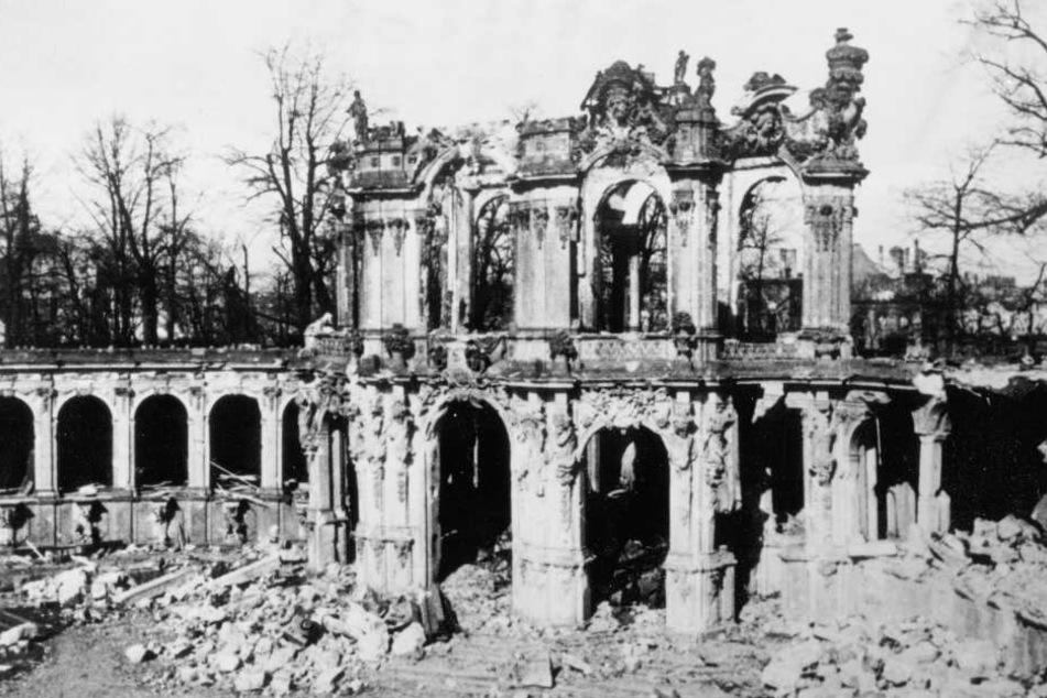Den Zwinger traf es am 13. Februar besonders stark.