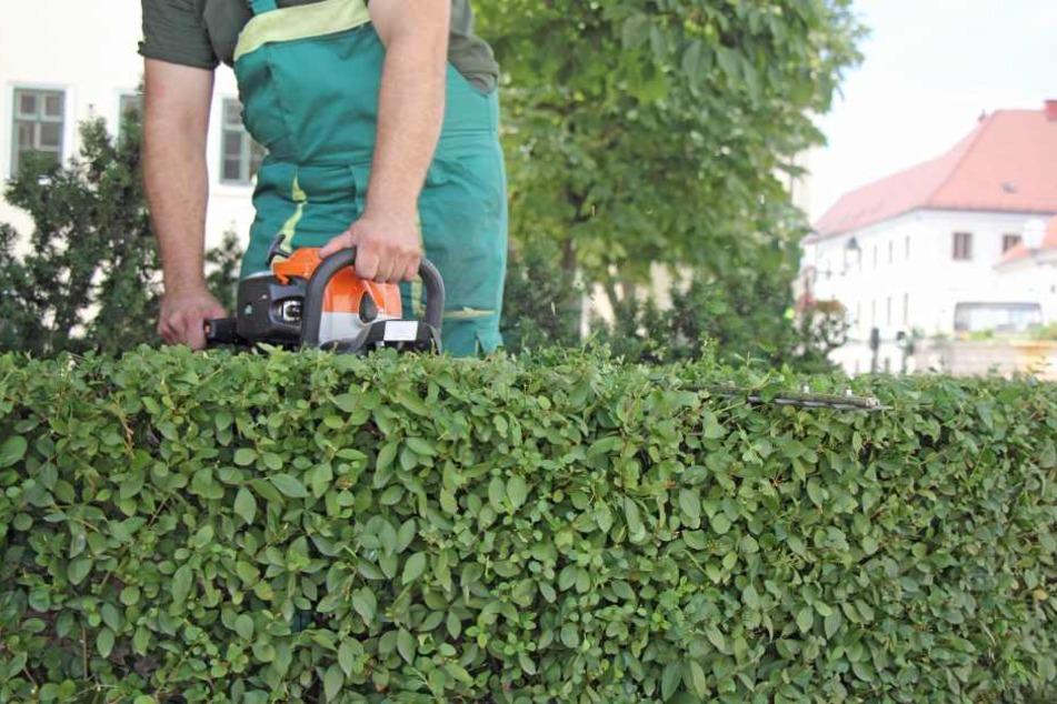 Grünschnitt und Winterdienst sollten privatisiert, 36 Hausmeister ausgemustert werden.
