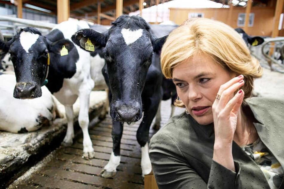 """Agrarministerin Julia Klöckner (45, CDU) stellte jetzt das """"Tierwohllabel"""" vor."""
