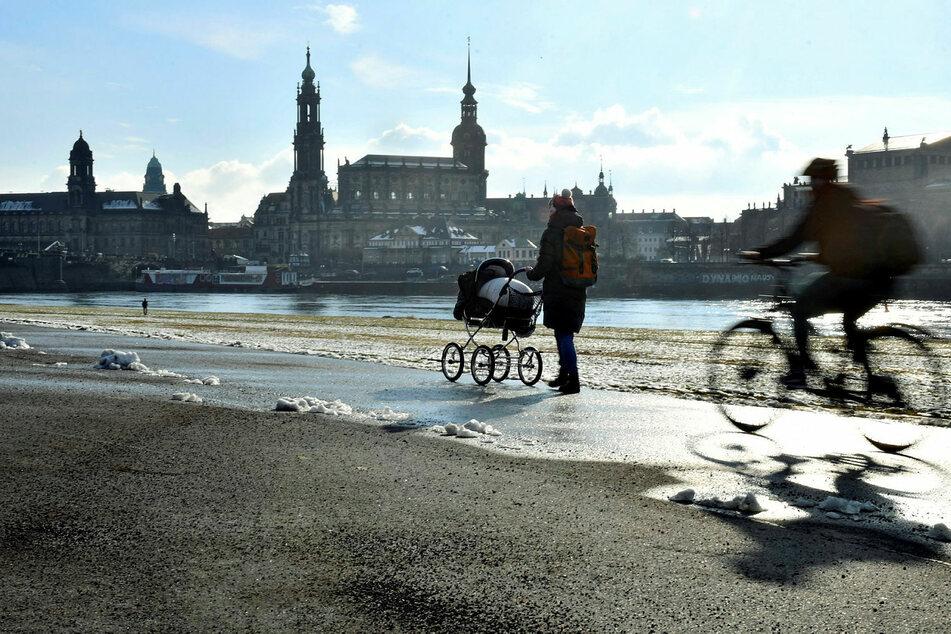 Abgesehen vom Elberadweg sehen die Dresdner beim Radwegenetz großen Verbesserungsbedarf.